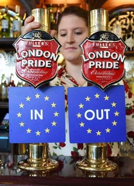 Brexit - in or out?