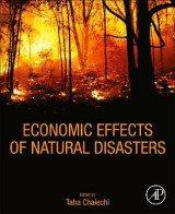Omslag - Economic Effects of Natural Disasters