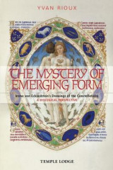Omslag - The Mystery of Emerging Form